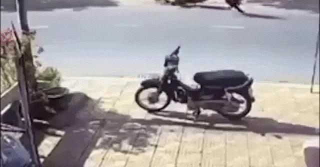 Clip: Chó chạy băng qua đường khiến hai xe máy gặp nạn