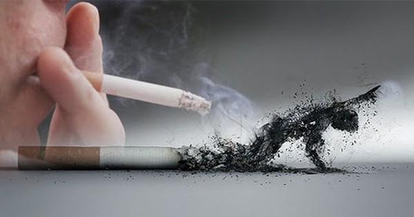 Hút thuốc, sử dụng chất kích thích có thể làm tăng nguy cơ gặp phải các triệu chứng nặng khi nhiễm COVID-19